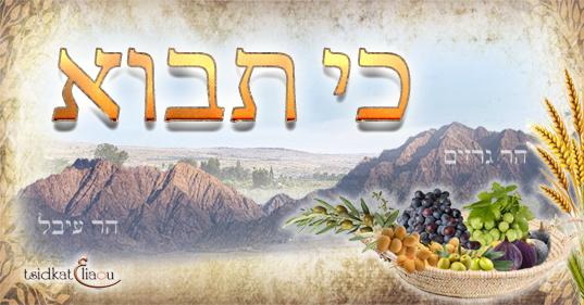 Parachat Ki Tavo : la gratitude et les mitzvot, sources de bénédictions