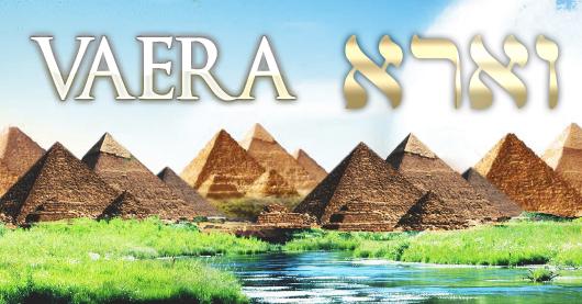 Parachat VAÉRA : les 7 premières plaies s'abattent sur l'Égypte