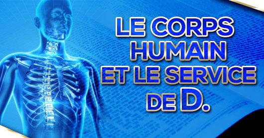 Le corps humain et le service de D.