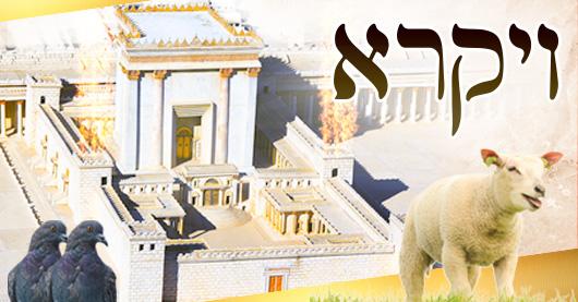 Parachat VAYIKRA : le sens et la valeur du sacrifice