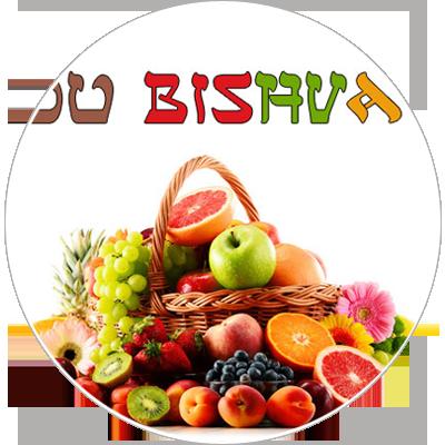 Tou Bishvat, le nouvel an des arbres